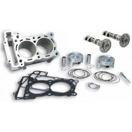 KIT CYLINDRES ET ARBRES A CAME MALOSSI 560 CC TMAX 530